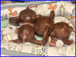 Boo boo Full body silicone Lana elephant baby girl
