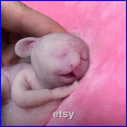 Full body silicone awake baby hybrid 1