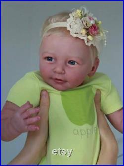 Reborn baby Girl Doll,Fake baby dolls,Baby Dolls,Girl Doll,Baby Dolls with Accessories,Reborn Toddler Dolls, Handmade Real Touch reborn Doll